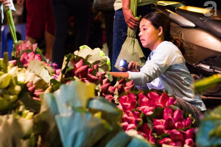 Những ngày đầu tháng 6, chợ hoa Quảng Bá có thêm hương sắc của cả ngàn bông sen