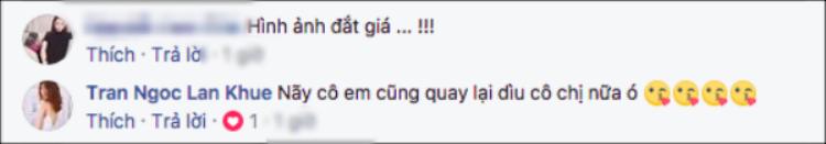 Hành động 'khuỵ gối' ấn tượng của sao Việt khiến fan thán phục