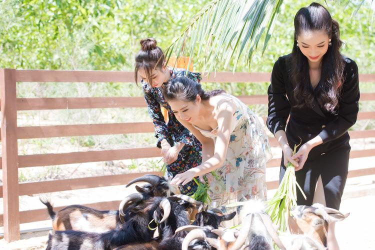 Thí sinh Hoa hậu Việt Nam 2018 căng tràn thanh xuân với hoạt động ngoài trời