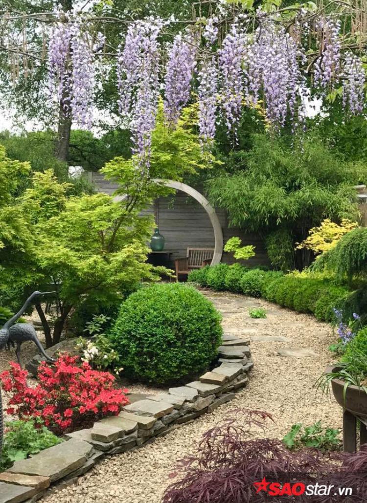 Khu vườn được thiết kế vô cùng đẹp mắt và là không gian sống yêu thích của hai vợ chồng.