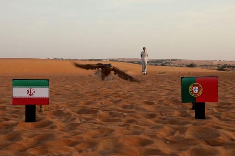 Chim cắt Farah dự đoán Iran sẽ gục ngã trước Bồ Đào Nha.