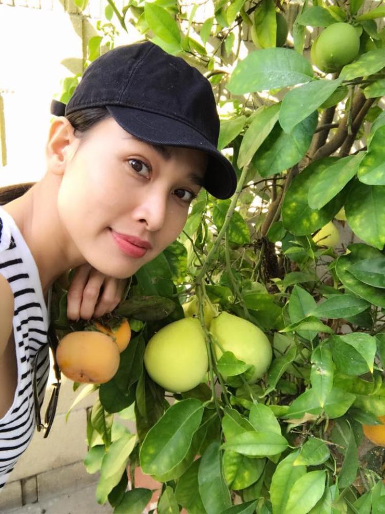 Trước đó người đẹp từng nhiều lần khoe khu vườn đầy rau, cây trái trĩu quả trên trang cá nhân của mình.