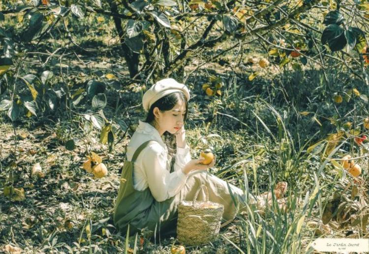 Đây là mùa đẹp nhất của vườn hồng. Du khách có thể ghé thăm ngắm các vườn hồng đầy trái chín mọng ở khu vườn gần Dinh III Bảo Đại cũng như gần đèo Mimosa. Ảnh: Nguyễn Thế Vinh