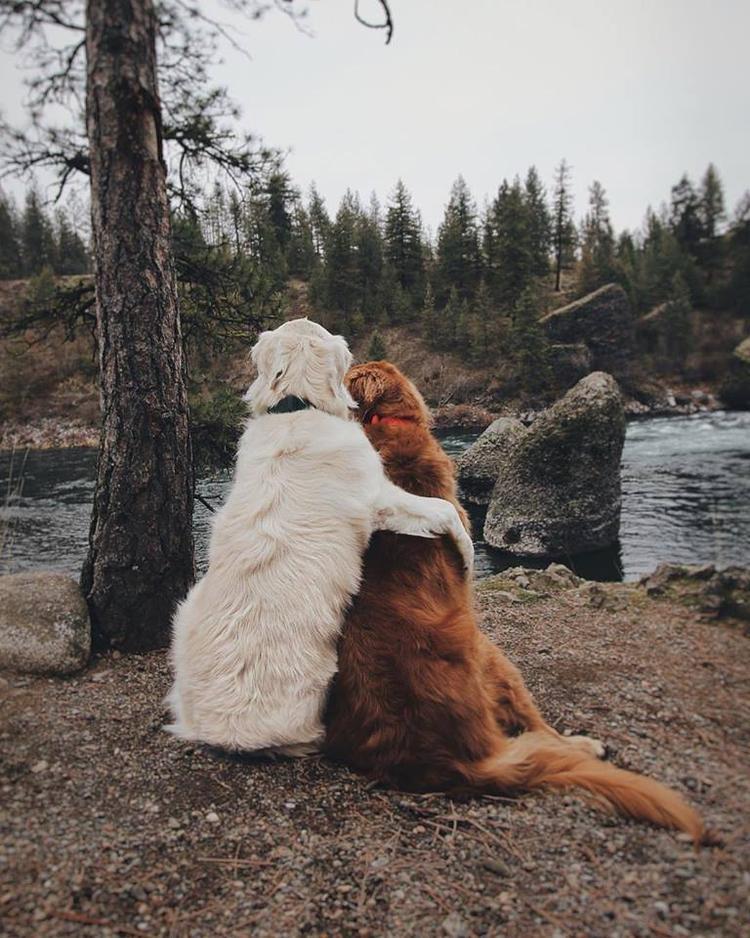 Mình cứ bên nhau hoài, đi du lịch cùng nhau hoài, chịu không?