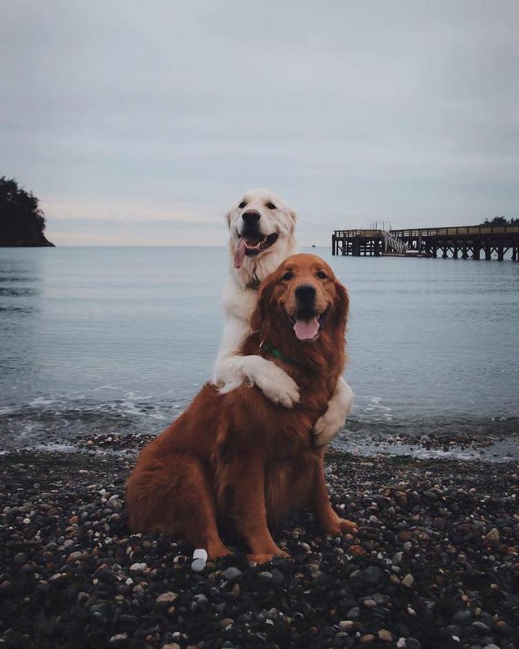 """'""""Cảnh ở đây đẹp quá em ơi. Cười một cái mình chụp ảnh nào!"""""""