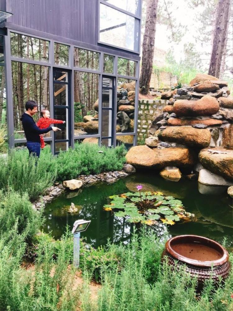 Khu vườn bên ngoài biệt thự có hoa, có cây cỏ, có hồ nhỏ nuôi cá… được đánh giá là khu vườn đẹp đáng giá của cặp vợ chồng này.