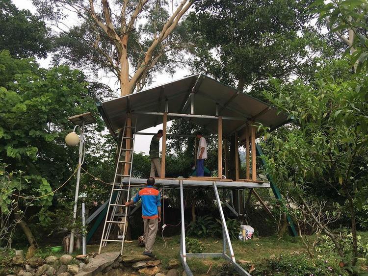 Trên trang cá nhân của mình, ca sĩ Mỹ Linh cũng khoe đang sửa sang lại khu vườn trong biệt thự của gia đình.
