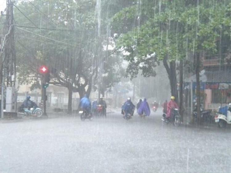 Nghĩ về cơn mưa lớn mà nhiều người cũng đủ cảm thấy mát lạnh toàn thân.