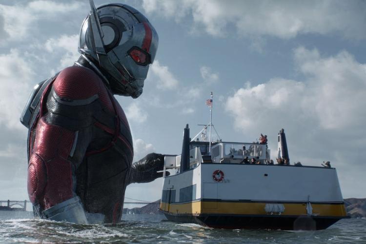 Đừng trông mong gì, Ant-Man and the Wasp sẽ chẳng có một vai cameo nào trong đội Avengers xuất hiện đâu!