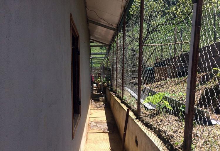 Phía sau nhà được quây rào thép.