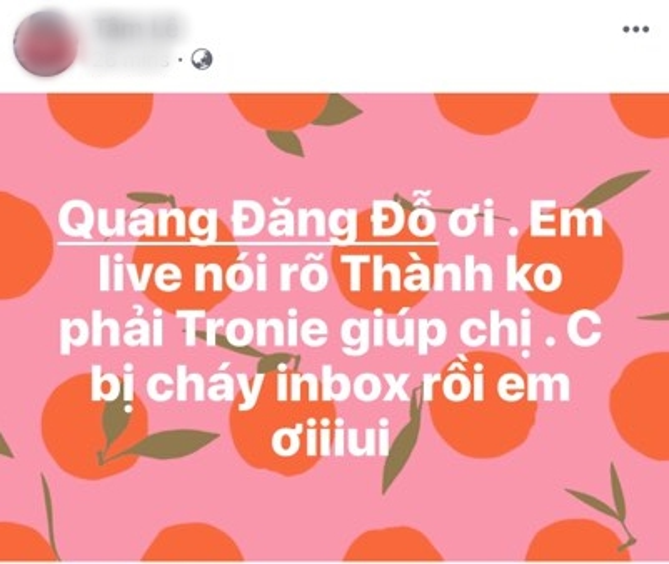 Quang Đăng tố bạn trai cũ Liêu Hà Trinh lừa đảo, Tronie vô tình bị 'vạ lây'?