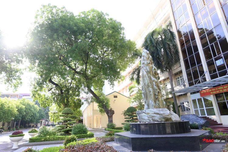 Ngôi trường ngập bóng cây xanh với khuôn viên đầy màu lãng mạn.