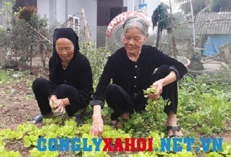 Suốt nửa thế kỷ qua, bà Tuyết (phải) cùng người vợ lẽ vẫn sống với nhau yên ấm khiến nhiều người nể phục. Ảnh Tuệ Minh.