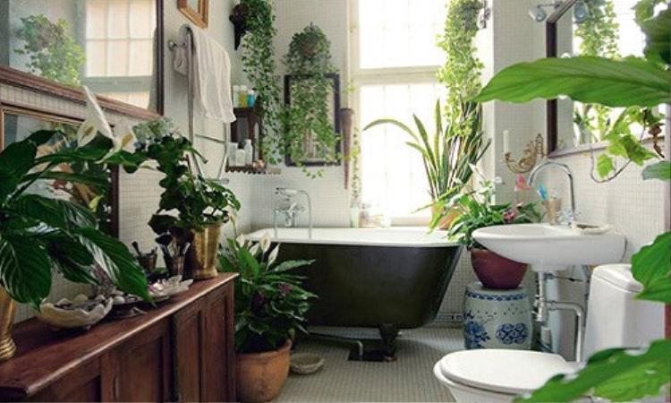 Nếu yêu thích thiên nhiên thì đây sẽ là nhà tắm trong mơ dành cho bạn. Bạn sẽ như những nhân vật trong chuyện cổ tích hay các bộ phim tình cảm lãng mạn khi thả mình trong chiếc bồn tắm này.
