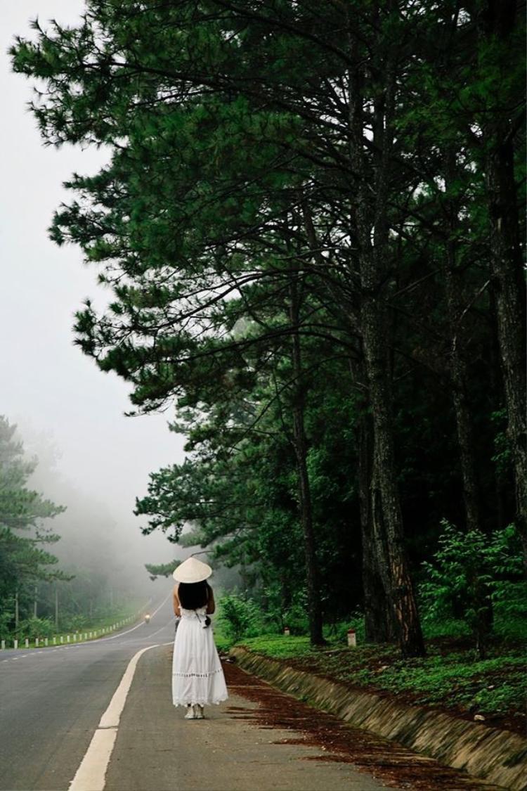 Khung cảnh đẹp mờ ảo tại Măng Đen (Ảnh: Toan Minh Le)