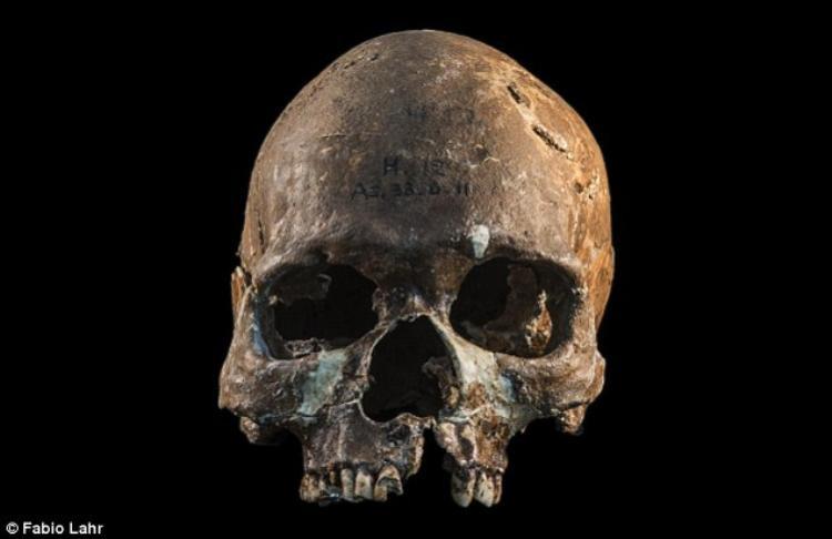 Các nhà khoa học cho rằng gười Đông Nam Á hiện đại có quan hệ với ít nhất bốn tộc người cổ đại.