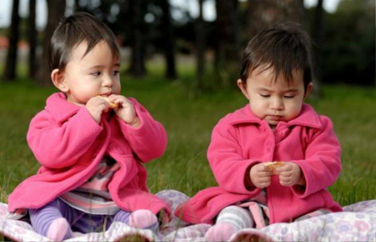 2 bé gái song sinh cùng mẹ nhưng lại khác cha.