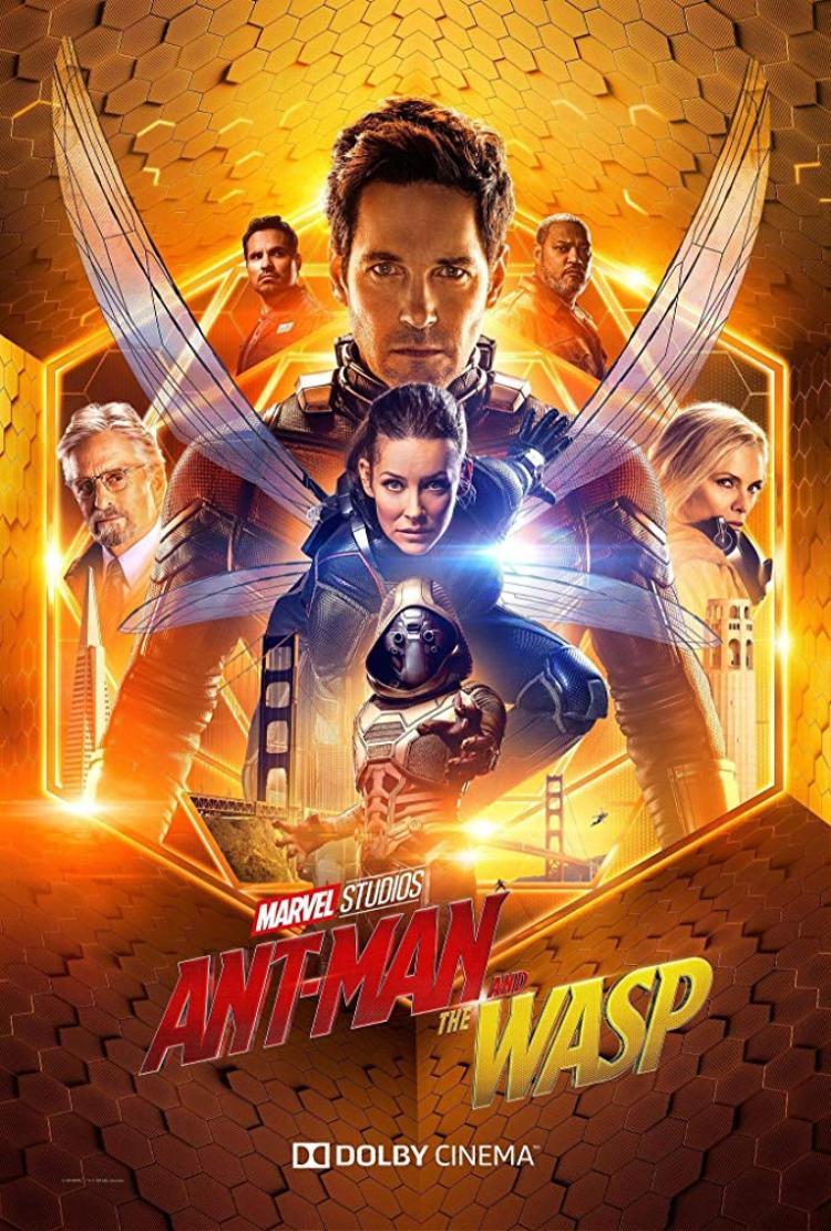 Dù hay cỡ nào thì phim Hàn Quốc vẫn thua trắng trước Ant-man 2 ngay phòng vé nhà