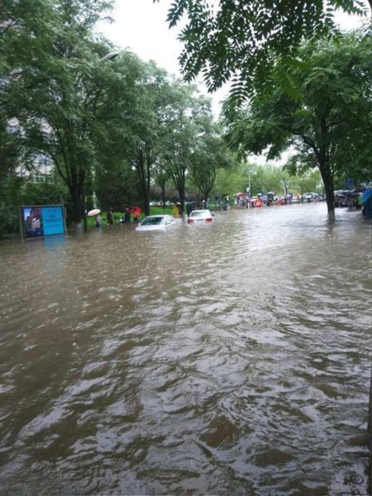 Mưa lụt tới gần tới tới gần nóc xe ô tô.