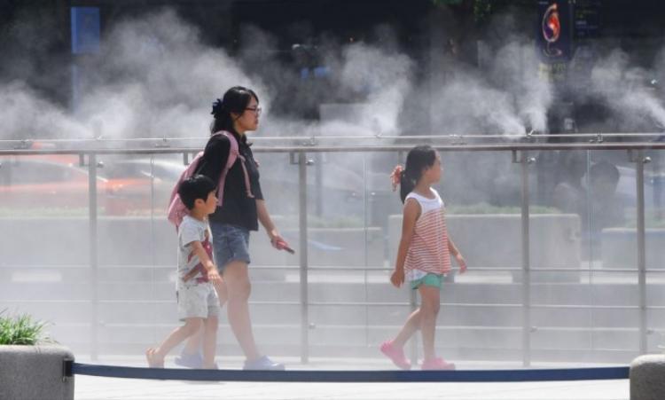 Bé gái 4 tuổi tử vong do ngồi trên xe bus trong thời tiết nóng bức suốt 7 tiếng đồng hồ.