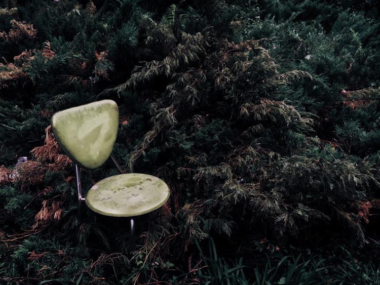 """Giải ba Tĩnh vật - """"Green in a Corner"""": Một chiếc ghế bỏ đi trong lùm câu hoang, gần một gara ngầm. Chụp bằng iPhone 6. Xử lý với VSCO. (XiangQi Kong)."""