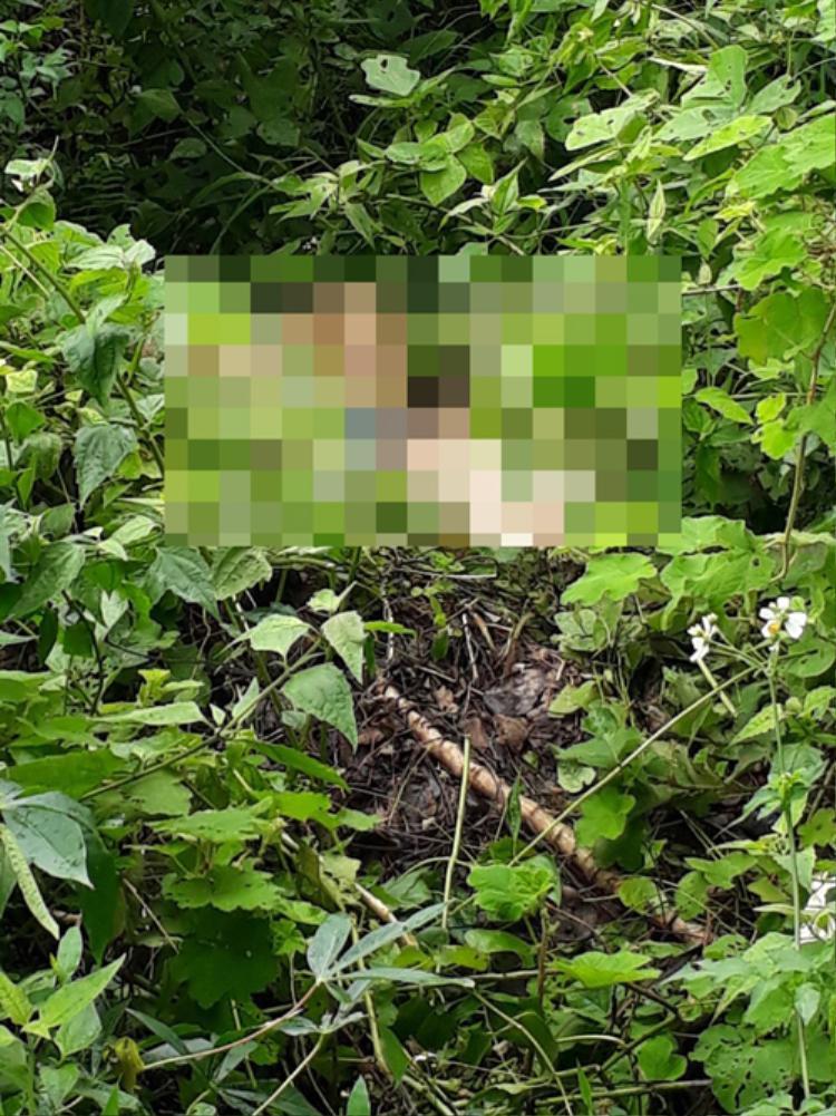 Vị trí phát hiện thi thể nạn nhân. Ảnh: Dân Việt.