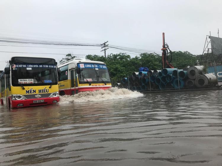 """Những chiếc xe buýt """"bơi"""" trên phố."""