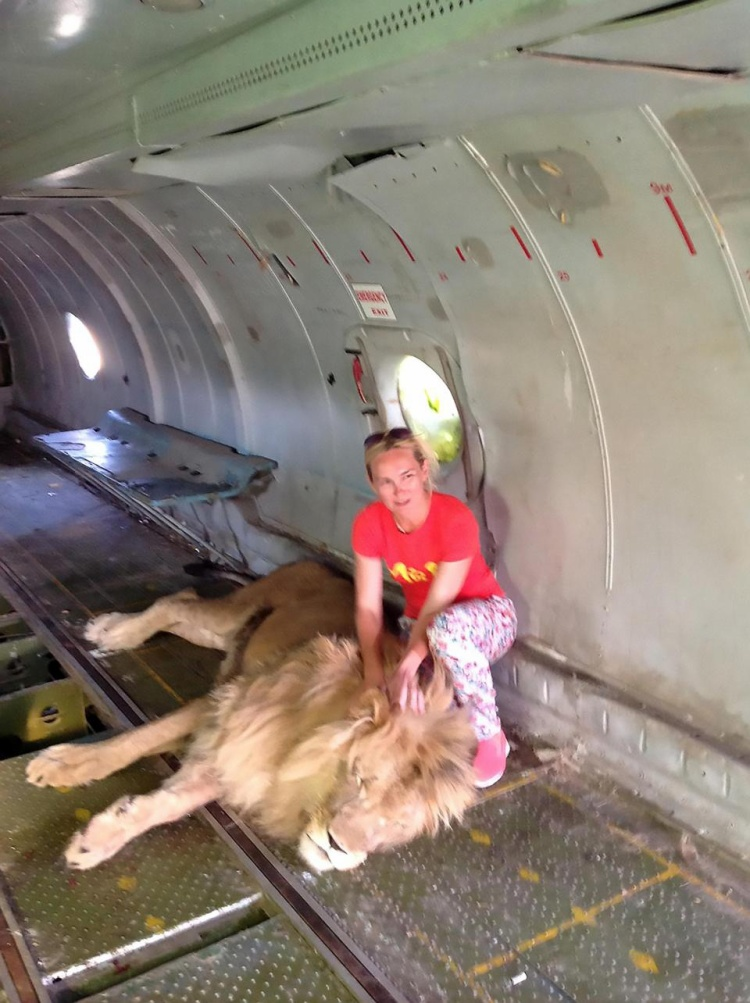 Bức ảnh Solomina chụp cùng sư tử.