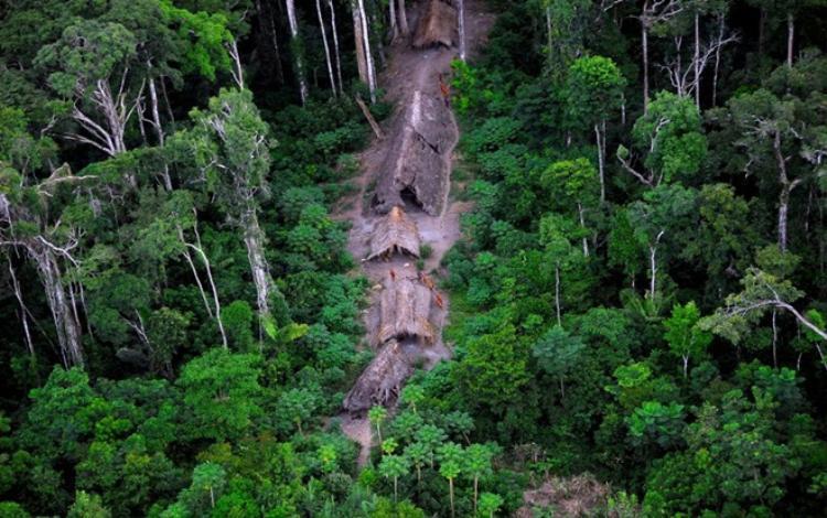 Những bộ lạc sống sâu trong rừng Amazon không có bất kỳ liên hệ nào với xã hội hiện đại, họ sống cùng nhau và tạo nên các bộ tộc hoặc các nhóm bộ lạc nhỏ. Ảnh: Odditycentral