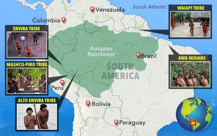 Các bộ lạc được phát hiện ở rừng Amazon khu vực Brazil, Colombia, Ecuador, Peru và miền bắc Paraguay. Ảnh Odditycentral.