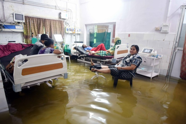 """Một nhân viên tại bệnh viên chia sẻ: """"Như bạn thấy đấy, bệnh viện đã trở thành địa ngục như thế nào rồi. Cá và côn trùng đã tìm đường để bơi vào bệnh viện. Có thể còn có rắn ở đây. Bệnh nhân có thể mắc bệnh nặng hơn khi sống trong tình trạng kém vệ sinh như thế này""""."""