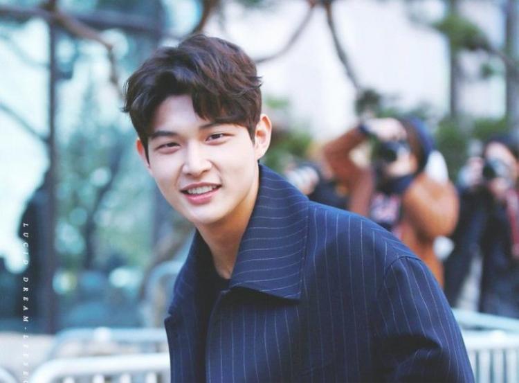 Được khán giả yêu thích qua hình ảnh đáng yêu trong Uncontrollably Fond, Hospital Ship, The Liar and His Lover,… Lee Seo Won nhận nhiều kỳ vọng trở thành Park Bo Gum thứ hai.