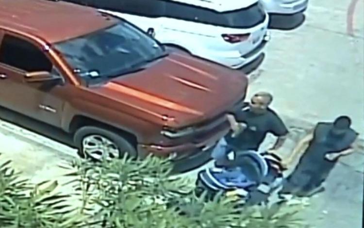 Nhóm trộm cướp đẩy xe đẩy chở cá mập vào xe tải hòng tẩu thoát. Ảnh cắt ra từ clip.