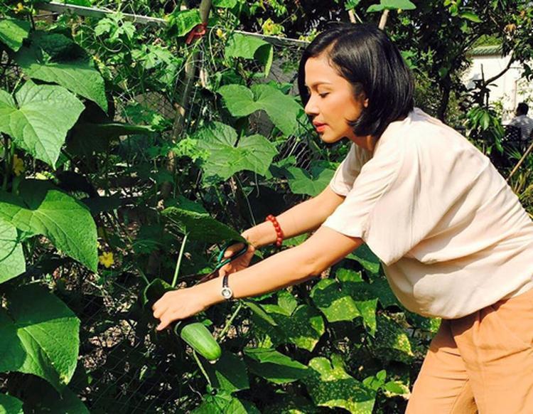 Ngoài những lúc bận rộn trên trường quay, cô lại dành thời gian chăm lo cho nhà cửa, vườn tược, chiêm nghiệm về những triết lý Phật giáo.