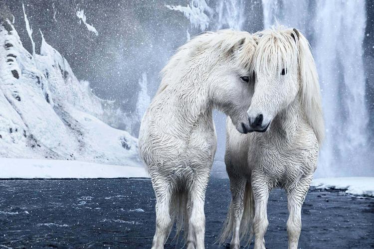 """Vị nhiếp ảnh gia trên nhận định: """"Iceland là một nơi siêu thực""""."""