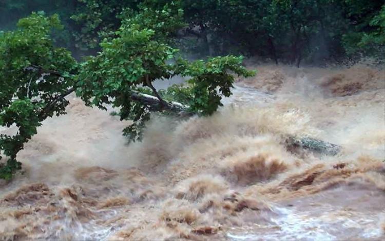 Vài ngày qua, những cơn mưa nặng hạt liên tục diễn ra tại thành phố Lynchburg ở bang Virginia, Mỹ. Con đập Lake College đang phải đối mặt với nguy cơ không thể giữ được nước. Thậm chí những cây lâu năm cũng phải bật rễ trước dòng nước mạnh dữ dội.