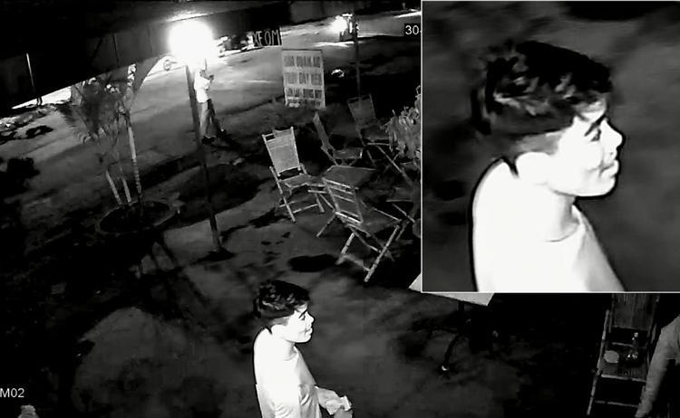 Vụ tài xế Grab bị giết rồi cướp xe máy trong con hẻm vắng: Cận mặt 2 nghi can sát hại nạn nhân