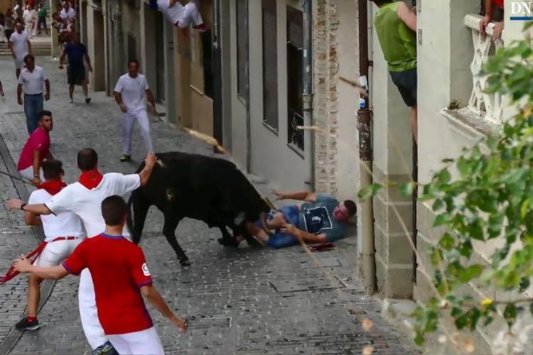 Dù ngã lăn ra đất, con bò vẫn không buông tha cho người đàn ông.