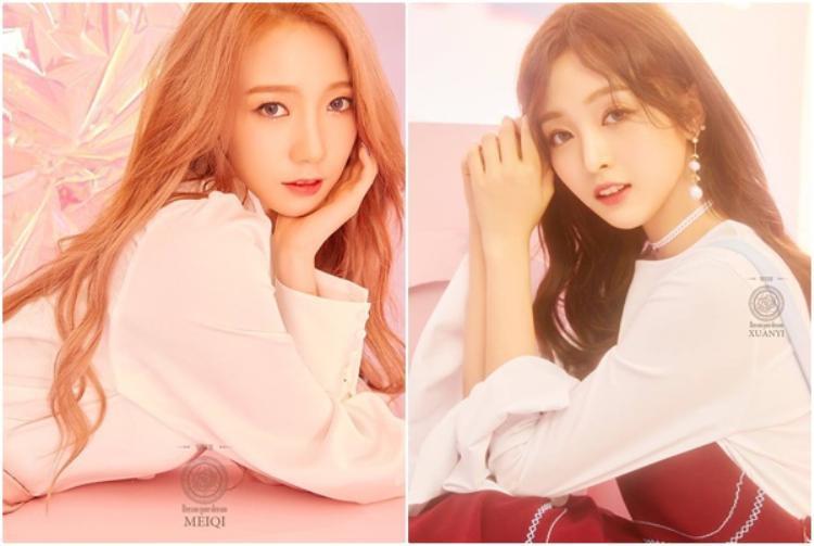 MeiQi cùng XuanYi vốn là thành viên WJSN, khi tham gia Produce 101 bản Trung thì 2 cô gái này lần lượt giành được quán quân và á quân.