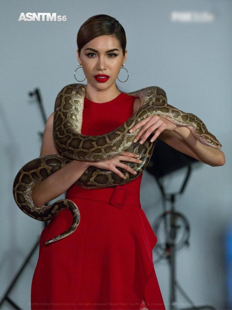 Cô thị phạm cho thí sinh trong vòng thử thách chụp ảnh cùng động vật hoang dã.