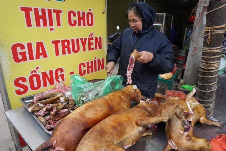 Ngành thú ý đang xây dựng lộ trình để hạn chế thói quen ăn thịt chó ở thủ đô.
