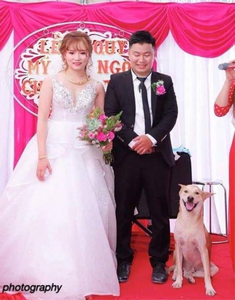 Tấm hình cưới thu hút nghìn like của cư dân mạng