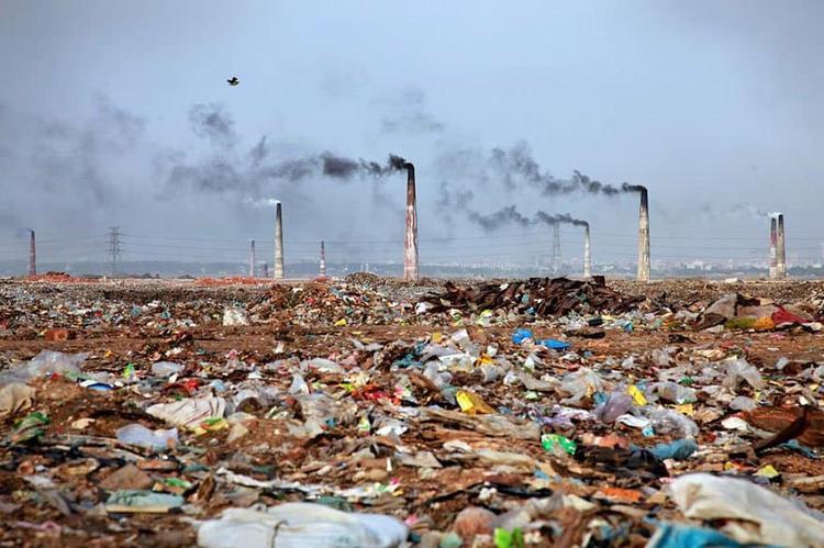 Giật mình 15 bức ảnh tố con người đang rất tàn nhẫn với Trái đất