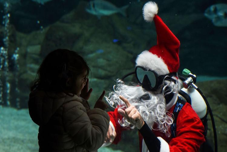 """Bé gái đưa tay chào thợ lặn trong trang phục """"Ông già Noel"""" tại một Công viên thủy cung ở thị trấn Gournes, Crete, Hy Lạp. Ảnh: AFP"""