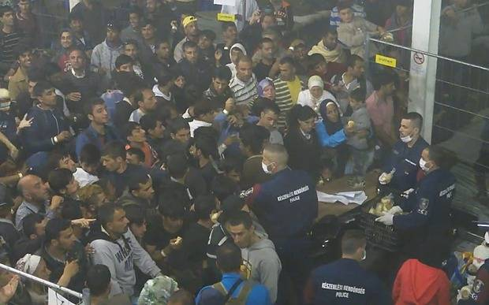 Migrants_fed_like__3436205b
