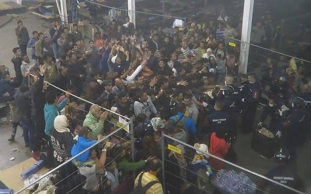 Migrants_fed_like__3436206b