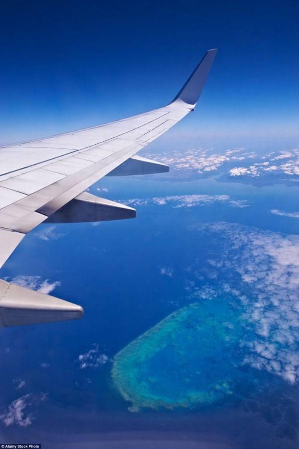 Dù không phải thợ lặn, bạn vẫn có thể thưởng thức trọn vẹn vẻ đẹp của rạn san hô Great Barrier Reef , Australia khi bay qua nó.