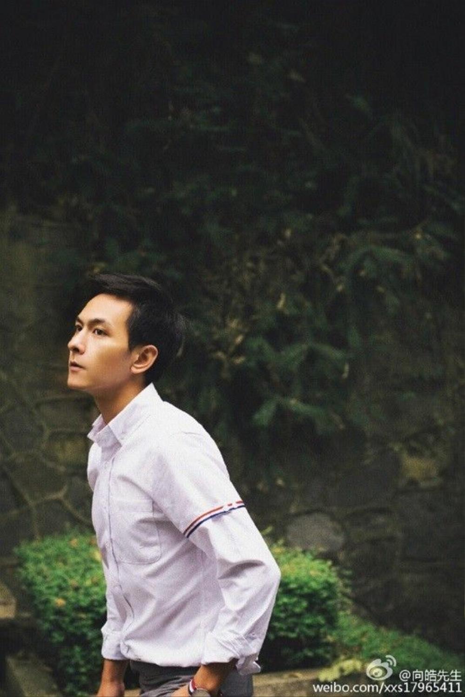 song-trinh