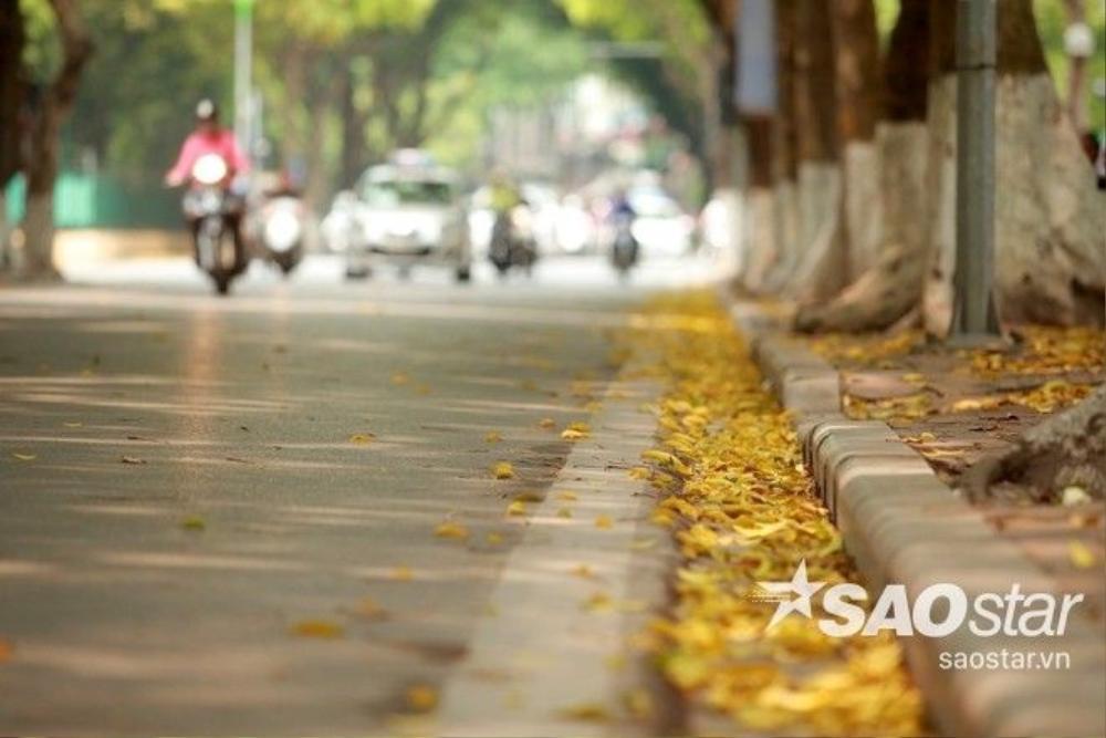 Một góc nhỏ nhìn sang đường Hoàng Hoa Thám.