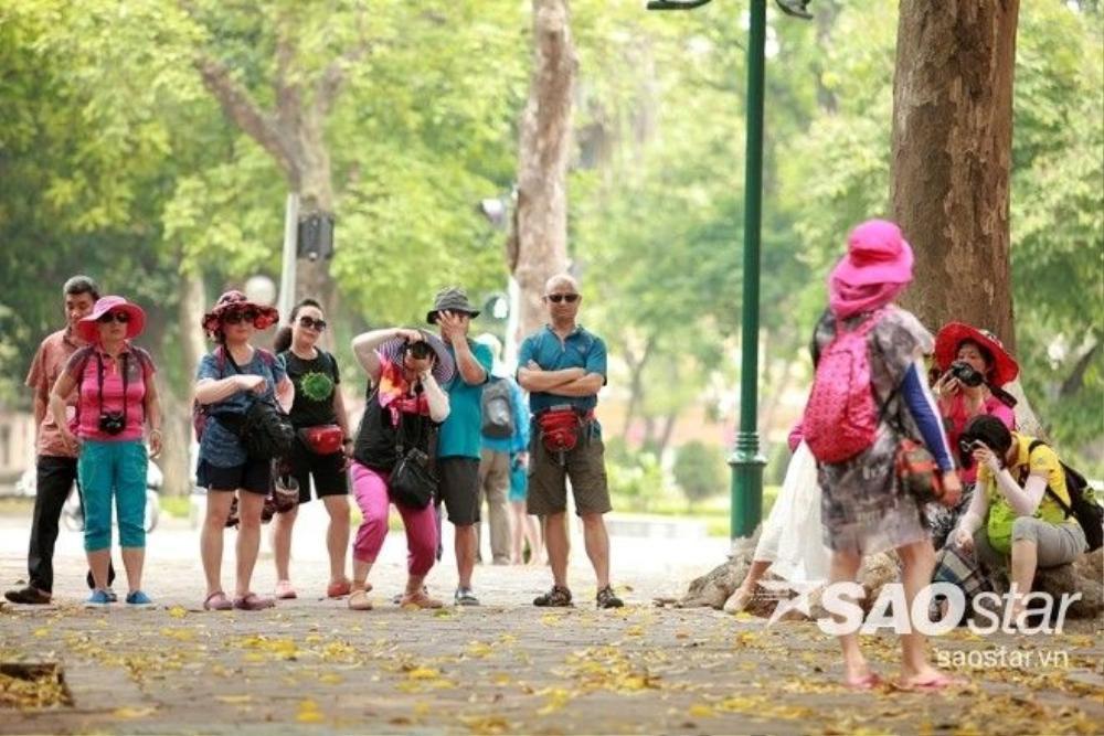 Du khách nước ngoài ngỡ ngàng cảnh đẹp mùa thay lá trên con phố Phan Đình Phùng